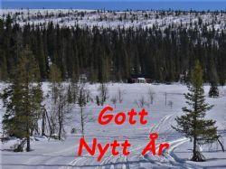 GottNyttÅr.jpg